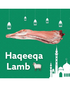 Picture of Haqeeqa Sheep