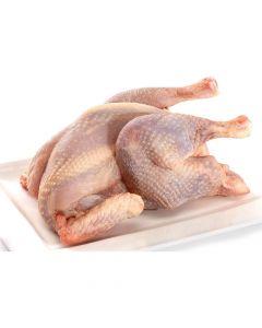 3 Boiler (Hen)