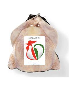 Picture of Frozen Halal Whole Turkey