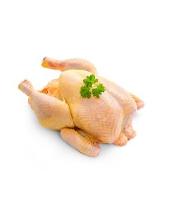 Picture of CORN FED CHICKEN