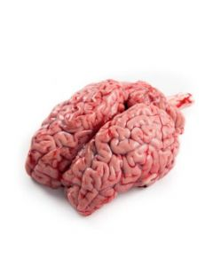 Picture of Veal Brain (Whole)