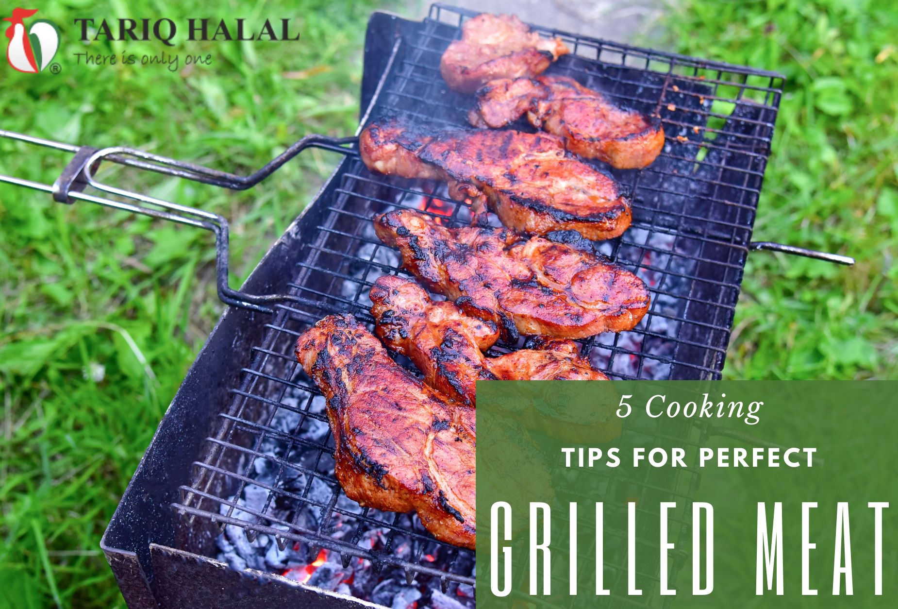 5 Cooking Tips for Perfect Grilled Meat
